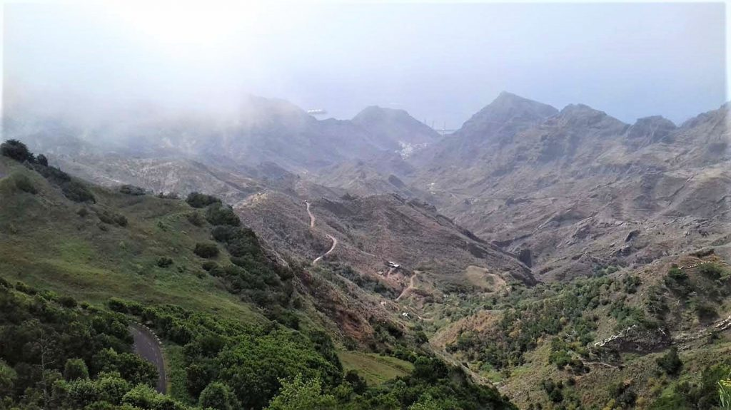 Tenerife ködös hegyvidék